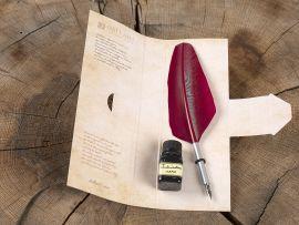 Plume d'oie rouge pour caligraphie