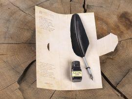 Plume d'oie noire pour caligraphie