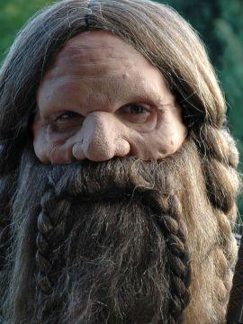 Masque complet de gnome avec perruque et barbe