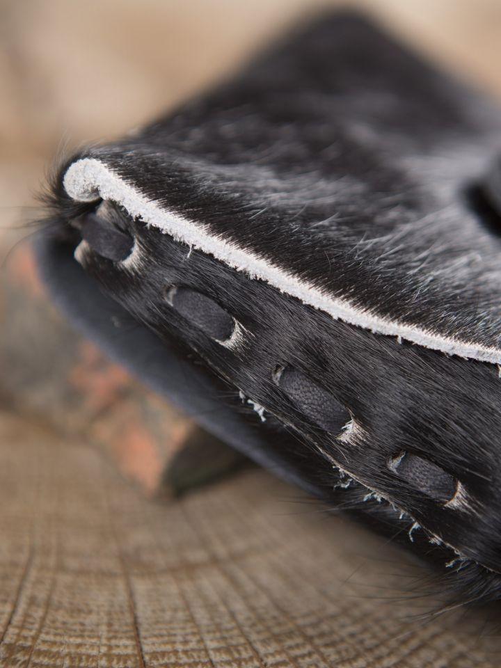 Petit sac en peau de vache, noir 3