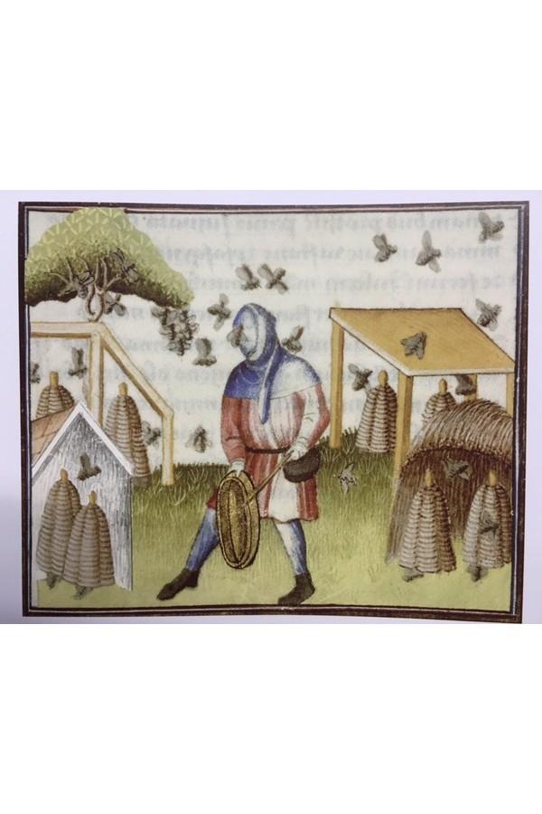 Capuchon médiéval en marron 4