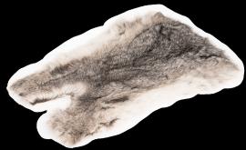 Fourrure de lapin gris souris